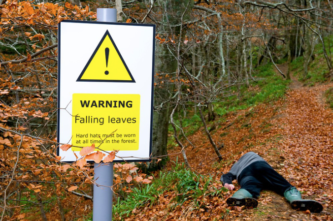 Spoof warning sign - Falling leaves - and victim of carelessness by Niall Benvie